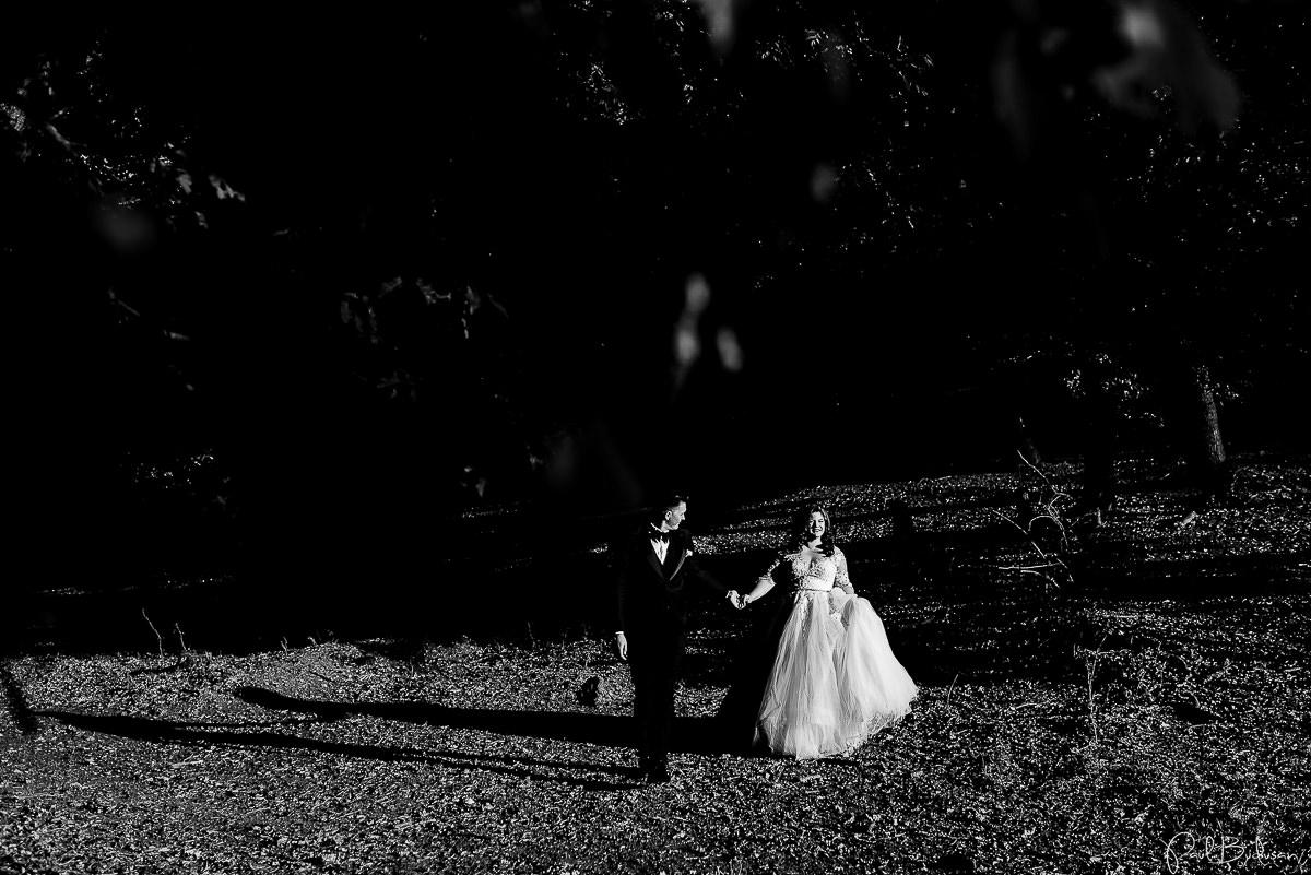 Nunta-la-Cort-Gallery-Wedding-Garden-Targu-Mures-Fotograf-Mures0.jpg